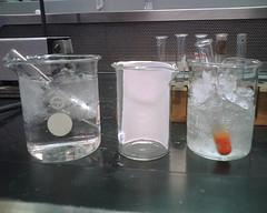 TLC plate in beaker