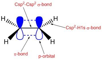 alkene orbitals