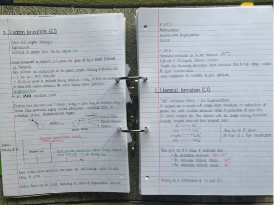 Example study notes
