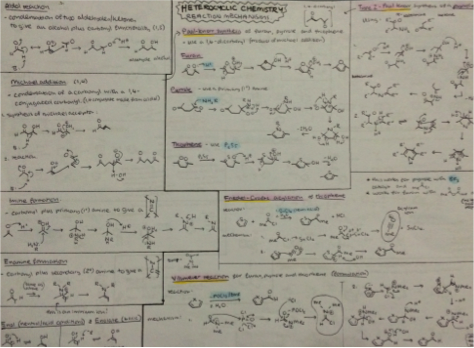 Example study notes 5